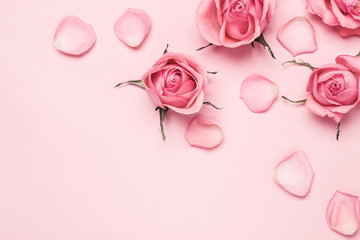 Floral monochrome composition of rose buds and petals on pink background, copy space