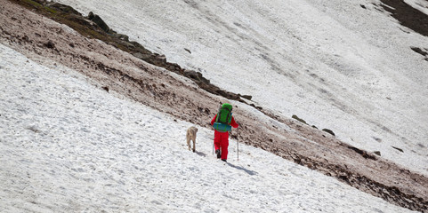 Fototapete - Hiker with dog on snowy glacier and avalanche trace at mountains