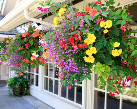 Blooming flowers amazing complex baskets hanging pots near small luxury lodge exterior.