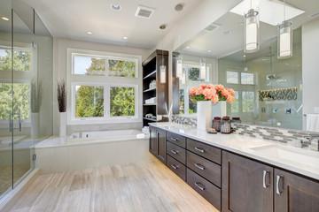 Contemporary bathroom interior. Luxury American modern home.
