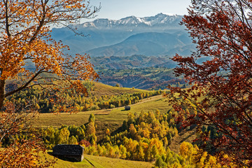 Fototapeten Braun Scenic View Of Landscape During Autumn