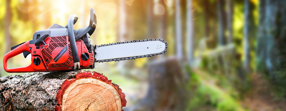 Chainsaw on wooden stump or firewood.