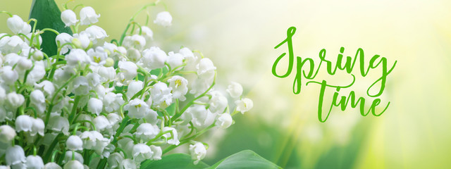 Poster de jardin Muguet de mai Lily of the valley (Convallaria majalis), blooming spring flowers in the form of postcard with greeting text, closeup, banner