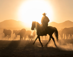 Silhouette Man Riding Horses On Land Against Sky During Sunset
