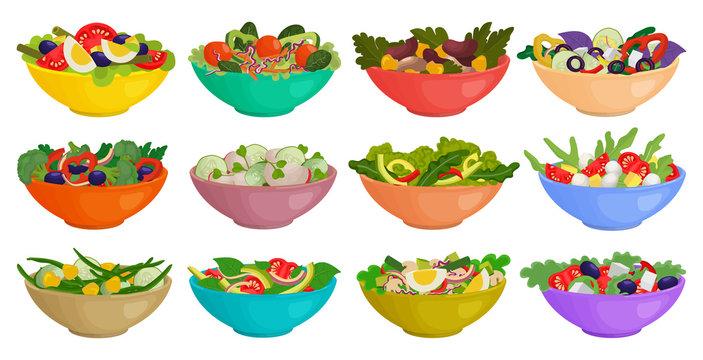 Vegetable salad isolated cartoon set icon. Cartoon vector set icon bowl lettuce. Vector illustration vegetable salad on white background.