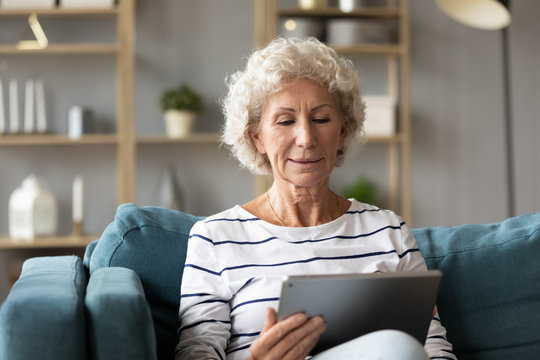 Calm mature woman using computer tablet, looking at screen, sitting on couch at home, older senior female with grey curly hair chatting or shopping online, using apps, services in internet