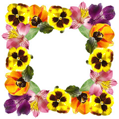 Fototapete - Beautiful floral pattern of tulips, alstroemeria and pansies. Isolated