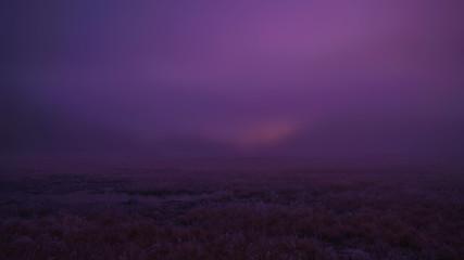 Foto auf Gartenposter Violett Scenic View Of Grassy Field Against Sky