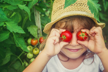 A child in a garden with tomatoes. Selective focus.