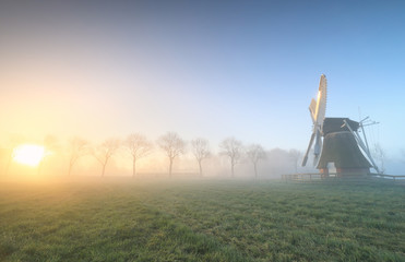 Wall Murals Khaki beautiful sunrise in Dutch countryside with windmill