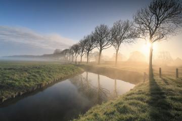 Wall Mural - beautiful serene foggy sunrise in countryside