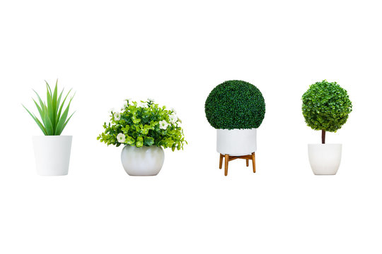 Set of flower pots for decor isolated on white background