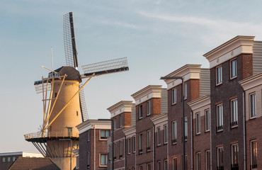 Photo Blinds Camel Schiedam windmill De Kameel in urban location