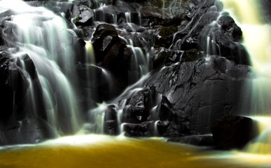 Foto op Textielframe Bos rivier water flowing from the waterfall