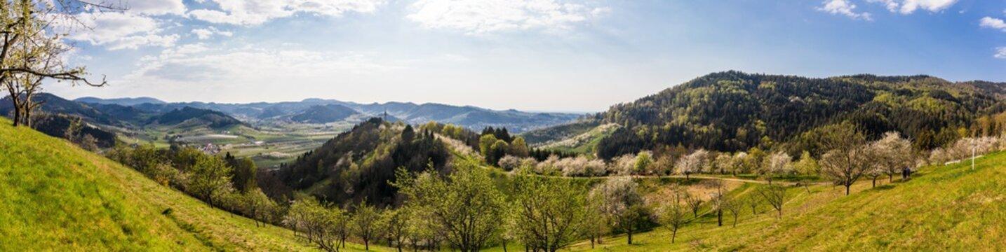 Panorama auf dem Hexensteig bei Laudenbach im Schwarzwald