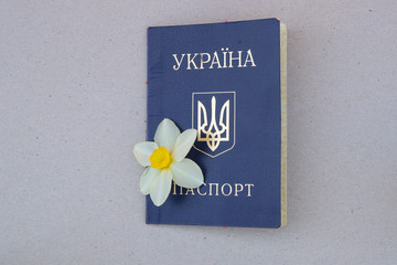 Photo on textile frame Narcissus Ukrainian passport with a daffodil flower bud on an isolated background