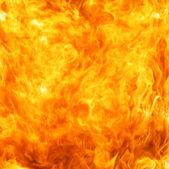 Photo sur Toile Feu, Flamme blaze fire flame conflagration texture background in square ratio