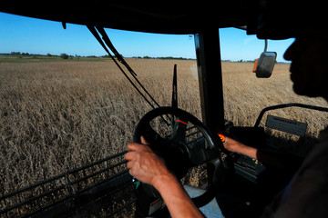 A worker drives a combine harvester used to harvest soybeans on a farmland in Chivilcoy, on the outskirts of Buenos Aires