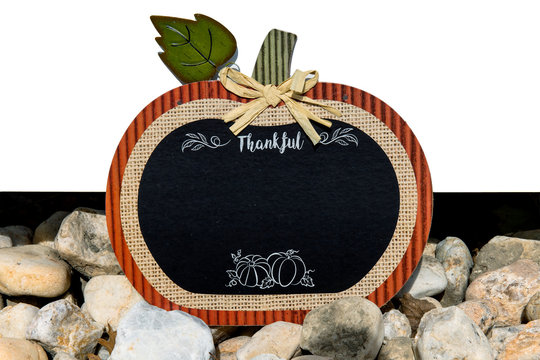 What are you thankful for this fall?