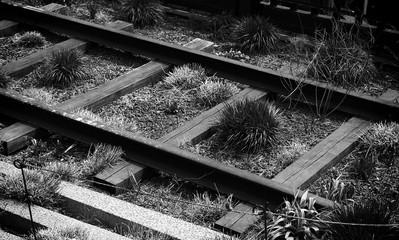 Spoed Fotobehang Spoorlijn High Angle View Of Grass Growing Amidst Railroad Tracks