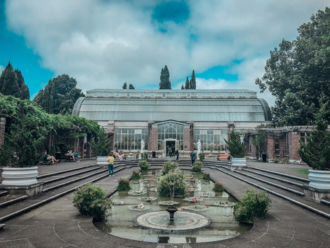 Auckland domain, auckland's oldest park, greenhouse and fountain