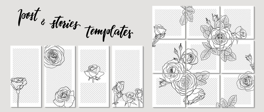 Trendy template for social networks stories and posts line contour roses, vector illustration. Design backgrounds for social media. Mockup for personal blog or shop