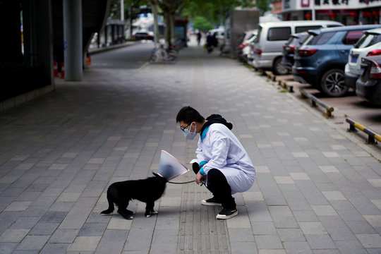 Man wearing a face mask interacts with a dog wearing an e-collar in Wuhan