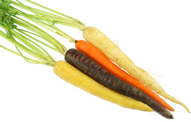 Wall Mural - Colorful organic carrot isolated on white background