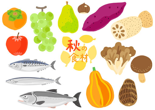 秋の食材 野菜と果物と魚 セット