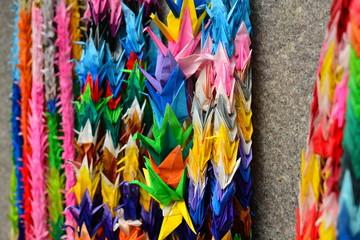 Zelfklevend Fotobehang Paradijsvogel Full Frame Shot Of Colorful Papers