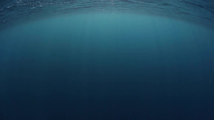 Fotomurales - Loopable footage of the sea surface from underwater
