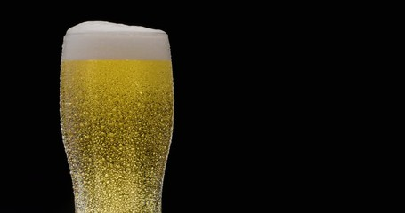 Wall Mural - Glass of light beer on a black background. A jet slowly fills the glass with beer, causing abundant bubbles and foam. Clockwise rotation.