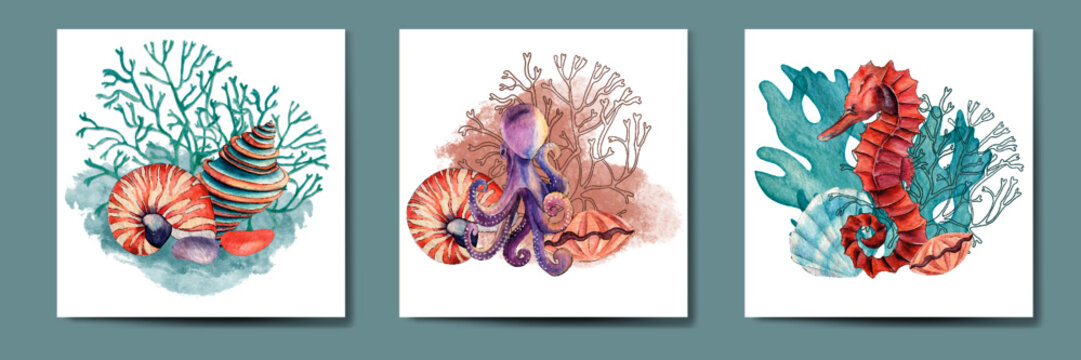 Set of watercolor cards with sea treasures, print and pattern underwater world, sea star, coral,  sea life