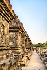 Wall Mural - Candi Plaosan, a Buddhist temple near Prambanan in Central Java, Indonesia