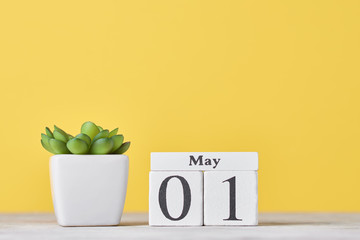 Wooden block calendar with date May 1 and succulent plant in the pot on yellow background. Labor Day concept Papier Peint