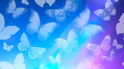 Fototapeten Schmetterlinge im Grunge Beautiful gradient background with butterflies and highlights