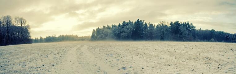 łąka i las zimą