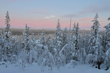 Winter landscape with colourful sky in Finnish Lapland