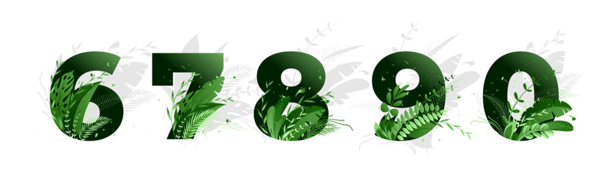 Vector illustration. Flower font numbers 6,7,8,9,0. Green numbers and elements of nature, branches leaves and birds
