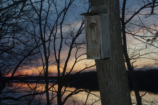 wood duck nesting box with sunset