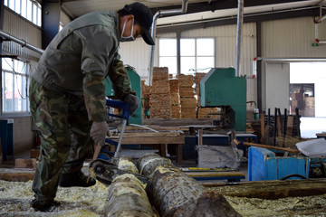 Employee saws logs at a wood factory in Suifenhe