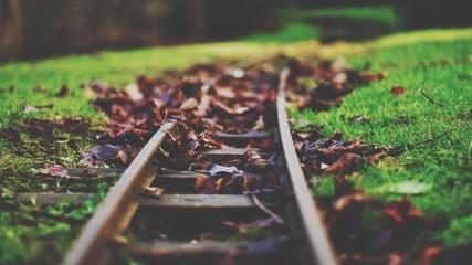 Spoed Fotobehang Spoorlijn Railroad Tracks In Autumn