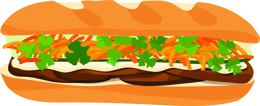 Beef Banh Mi Vietnamese sandwich wit shredded carrots, sliced cucumbers, mayonnaise sauce, and cilantro. Isolated vector illustration.
