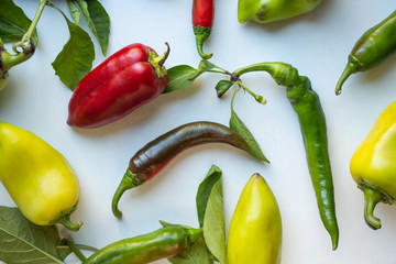 pepper with leaves. sweet and hot peppers.