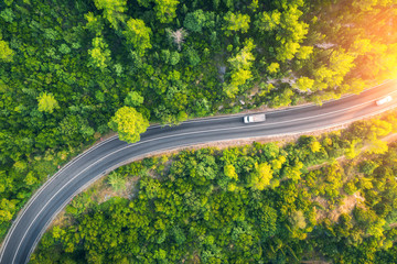 Garden Poster Trees Aerial view of road in beautiful green forest at sunset in spring. Colorful landscape with car on the roadway, trees in summer. Top view from drone of highway in Croatia. View from above. Travel