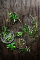 Fresh herbs - rosemary, basil, mint, cilantro, bay leaf, sage, curry leaf,  chamomile, oregano