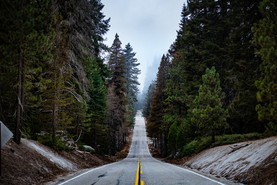 A straight steep road in Sequoia National Park, California, USA.
