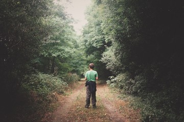 Wall Murals Road in forest Rear View Of Boy Standing On Pathway Amidst Trees In Forest