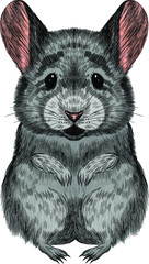 Stores photo Croquis dessinés à la main des animaux cute rat gray symbol of new year