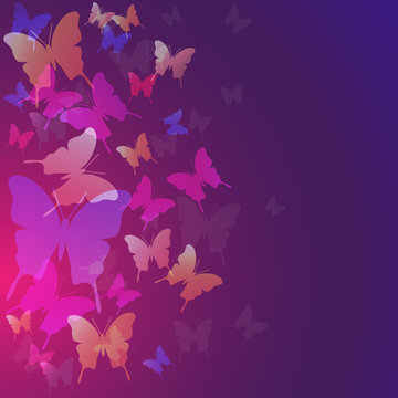 Abstract butterflies background, color trend 2020, pink, purple and blue